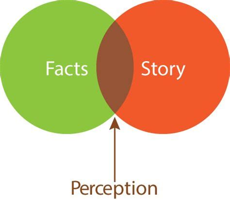 Self perception essay example